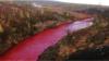 """""""Норникель"""" окрасил реку в красный цвет"""