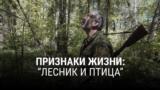 thumb_lesnik
