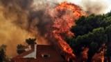 Итоги дня: Греция в огне, Россия под гнетом НДС