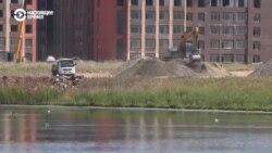 В Нур-Султане экозащитники обвиняют чиновников в уничтожении озер