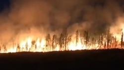 Как Сибирь переживает пожары