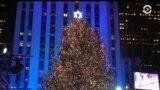 Америка: судьба Рекса Тиллерсона и главная елка Нью-Йорка