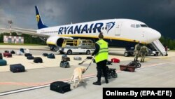 Belarusian security with a sniffer dog check the luggage of passengers in front of Ryanair's flight FR4978, which carried opposition figure Raman Pratasevich to Minsk on May 23, 2021.