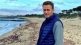 GERMANY -- Russian opposition politician Aleksei Navalny poses for a picture in an unknown location, in this undated image obtained from social media October 11, 2020