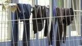 Германия планирует ввести пограничные патрули из-за беженцев, прибывающих через Беларусь