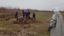 В Украине рекордная смертность от COVID-19, резко выросло число похорон