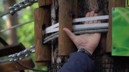 Бизнес-план: как подвесить бизнес на веревке