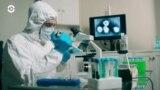 Детали: следы борьбы с древним вирусом в геноме человека