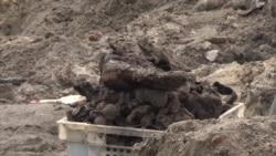 В Бресте во время строительства обнаружили захоронения узников еврейского гетто