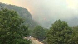 В Боржоми четвертый день пытаются потушить пожар в заповеднике