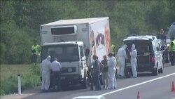 В грузовике на востоке Австрии найдены тела 50 беженцев из Сирии
