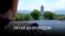 """Китай за огородом"". Фильм Станислава Феофанова"