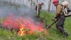 Как в России тушат лесные пожары