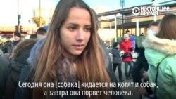 В Харькове 17-летняя студентка-медик натравила бультерьера на котенка и сняла это на видео