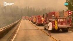 Пожары на западе США: горят Калифорния, Орегон и Вашингтон