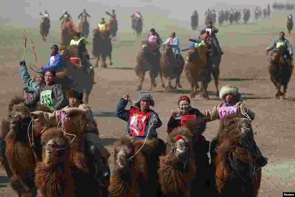 Забеги на дистанцию в 15 км проходят на просторах пустыни Гоби