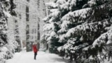 Kazakhstan - A woman uses her mobile phone to take pictures in a snow-covered park in Almaty, Kazakhstan January 24, 2017.