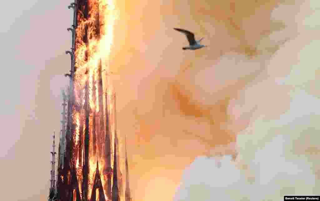 Из-за пожара рухнул шпиль собора. По словам представителя собора, пламя уничтожило все деревянные конструкции, поддерживавшие крышу