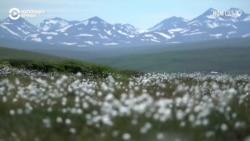 Крымчанин поехал на Аляску, чтобы искать золото
