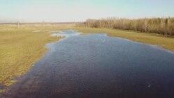 Фермеры в Псковской области накануне посевной считают убытки