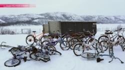 Ехали мигранты на велосипеде