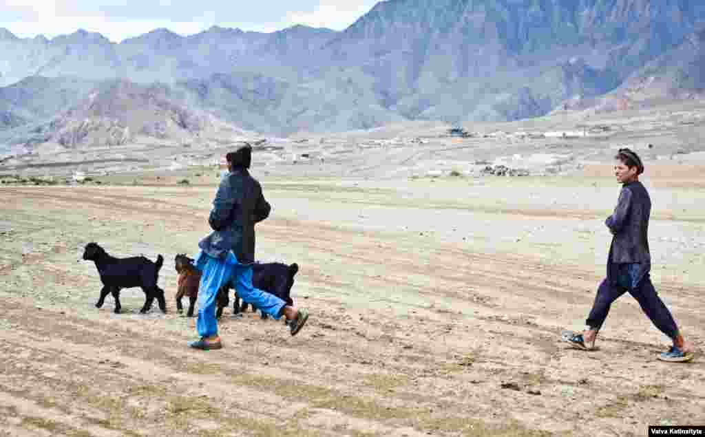 Общая численность племени кучи – 3 млн человек, которые на протяжении многих веков кочевали по стране