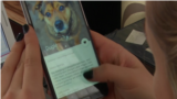 Dog's Tinder application in Lithuania