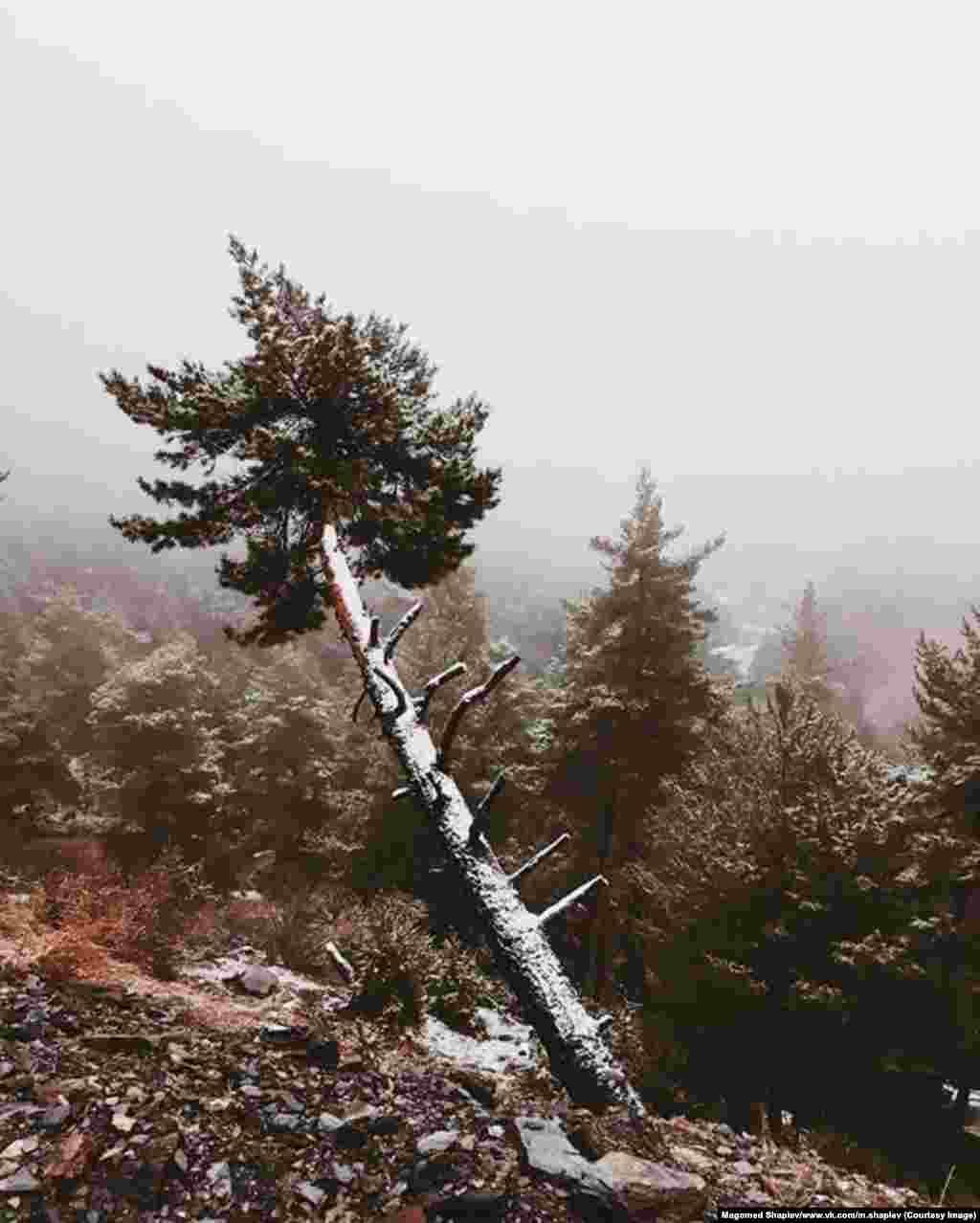 """Во время телефонного разговора с нашим корреспондентом Шапиев рассказал, что его любовь к пейзажной фотографии родом из детства. """"Я вырос в горах. Когда я был ребенком, я постоянно попадал в небольшие приключения и зарисовывал все, что видел"""""""