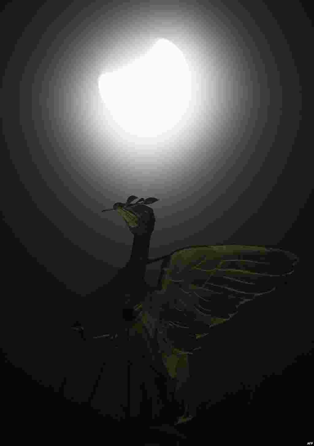 Лунное в Ливерпуле, Англия, утро 28 сентября 2015 года