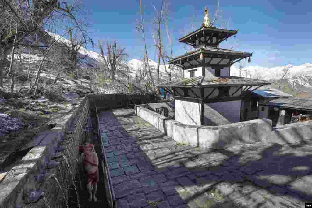 """Так выглядит священая пагода Муктинатх. Каждая религия интерпретирует название по-своему: для индуистов это """"место спасения души"""", а для буддистов - """"сто священных вод"""""""
