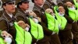 Полуторамесячные щенки лабрадоров участвуют в военном параде в Чили