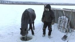 Yakutia grab