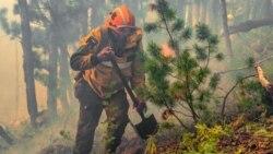 """""""У нас сейчас вопрос жизни и смерти"""". Якутия задыхается от лесных пожаров"""