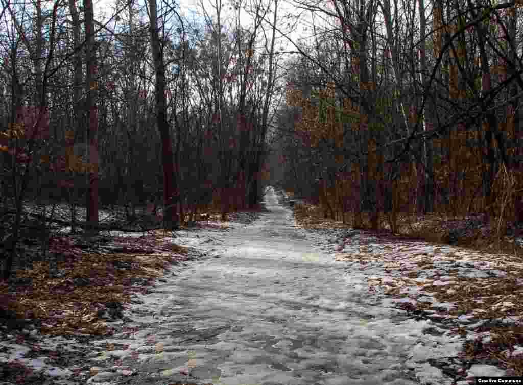 """Сам Бабий Яр сегодня – это тихий парк, где при хорошей погоде гуляют под деревьями парочки или катаются велосипедисты. """"Есть вещи, есть трагедии, перед безмерностью которых любое слово бессильно и о которых больше скажет молчание, – великое молчание тысяч человек. Может, и нам следовало бы здесь обойтись без слов и молча думать об одном и том же. Однако молчание много говорит лишь там, где все, что можно сказать, уже сказано. Когда же сказано еще далеко не все, когда еще ничего не сказано – тогда молчание становится сообщником лжи и несвободы. Поэтому мы говорим, и должны говорить, где можно и где нельзя, используя любую возможность, которые попадаются нам так редко"""". – Из выступления писателя Ивана Дзюбы в Бабьем Яру в 1966 году"""