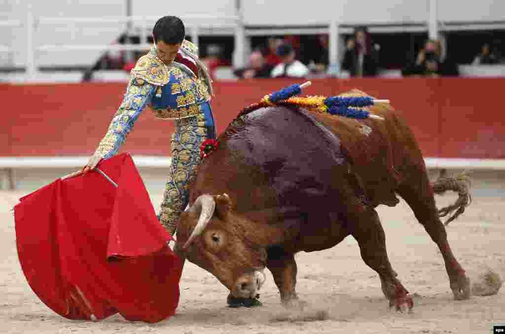 В южнофранцузском городе Арль на Пасху устраивают бои быков