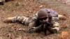 Польша подтвердила, что направит инструкторов в Украину