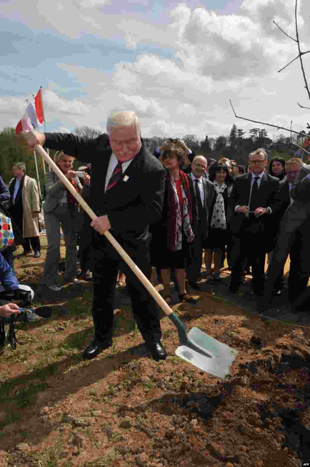 Бывший польский президент Лех Валенса сажает дерево в честь Французской революции