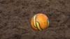 """Что такое """"болотный футбол"""" и кто в него играет"""