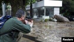 Во время наводнения из зоопарка Тбилиси сбежали животные, 14 июля 2015