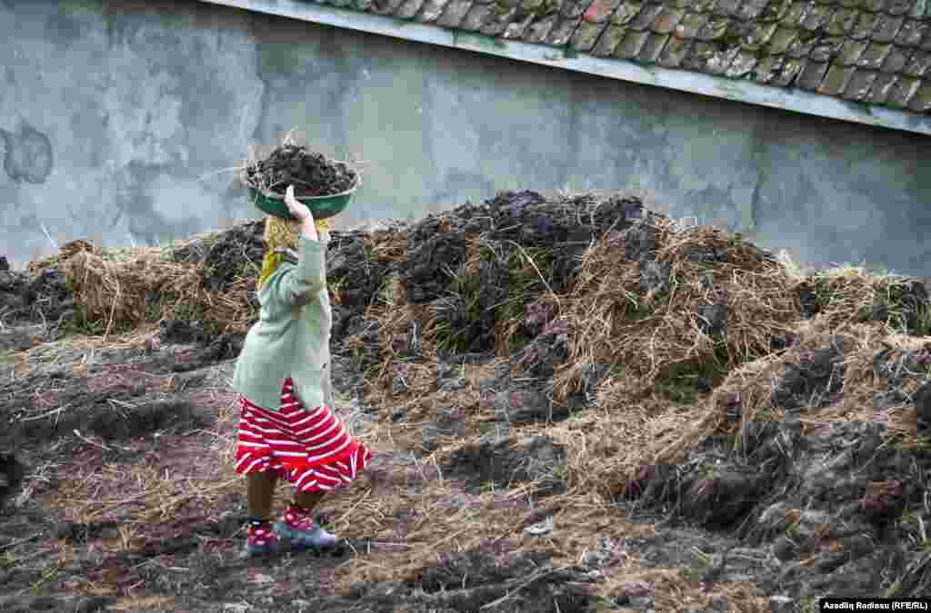 На фото – жительница расчищает дорогу от навоза