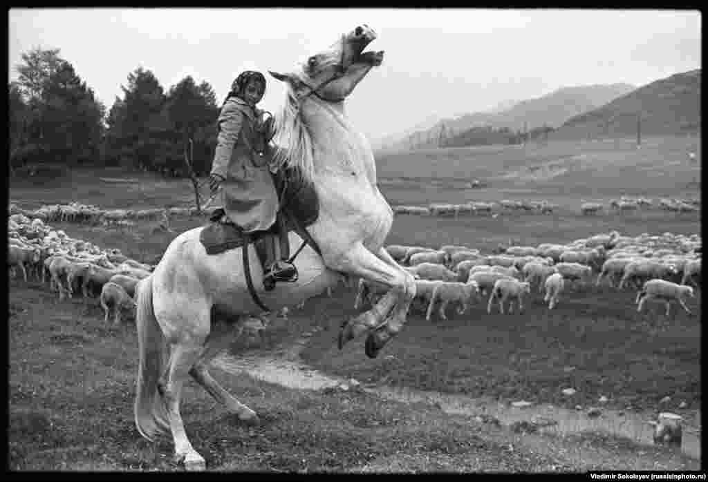 Девочка пасет овец в Алтайских горах, 1980 год