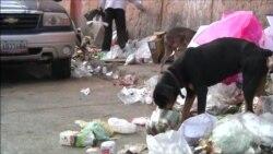 Жители Венесуэлы выбрасывают на улицу собак из-за кризиса