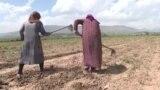Рахмон призвал фермеров воздержаться от поста