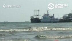 Аномальная жара привела к размножению токсинов на побережье Балтийского моря