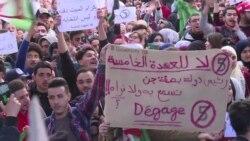 Отставка президента Алжира и реакция жителей страны
