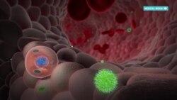 Как изменились препараты для терапии ВИЧ-инфекции