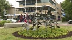 В Хильверсуме сажают подсолнухи в память о погибших на рейсе MH17