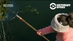 Кто заставляет индийскую девочку спасать мир