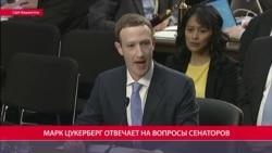 Цукерберг объясняет Сенату. Час Тимура Олевского