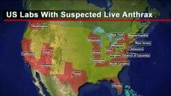 Правительство США случайно разослало споры с сибирской язвой